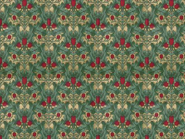 fairield tulips.jpg