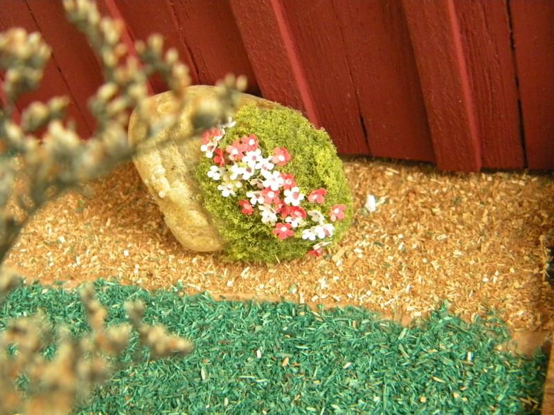flowers on rock