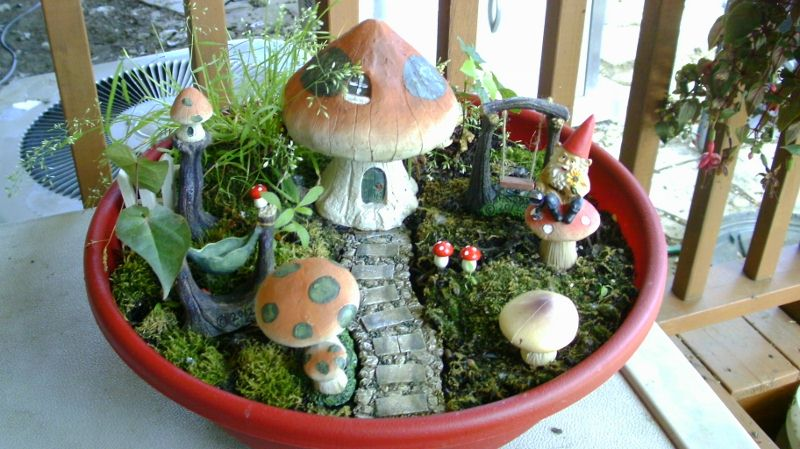 Starting A Fairy Garden Other Creative Endeavors The Greenleaf Miniature Community