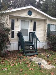 Old front steps