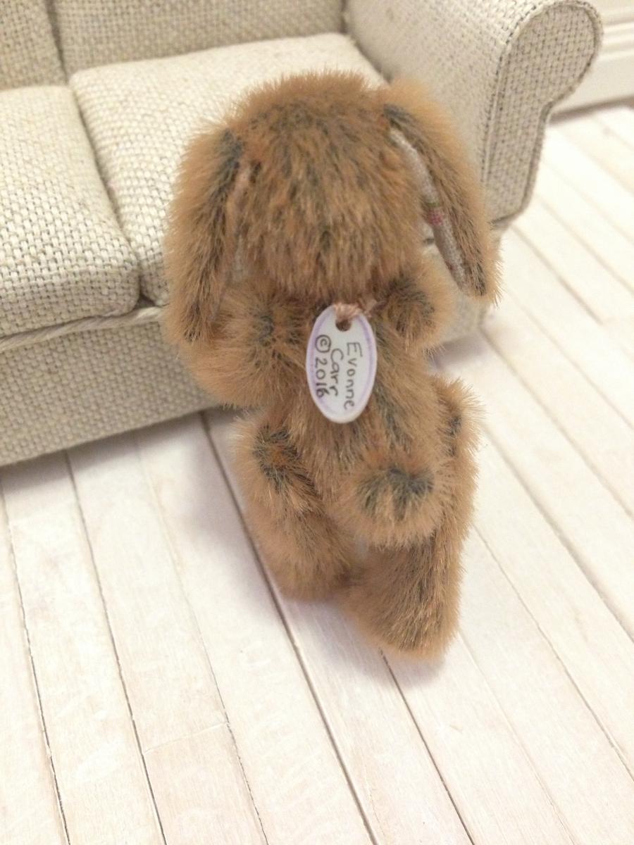 Bunny Bear Back