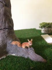 Mini Animals