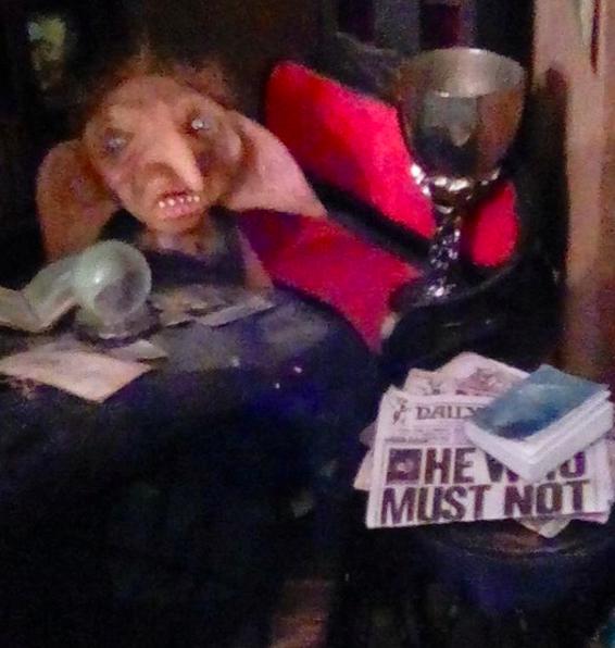 Tri-Wizard Tournament Cup