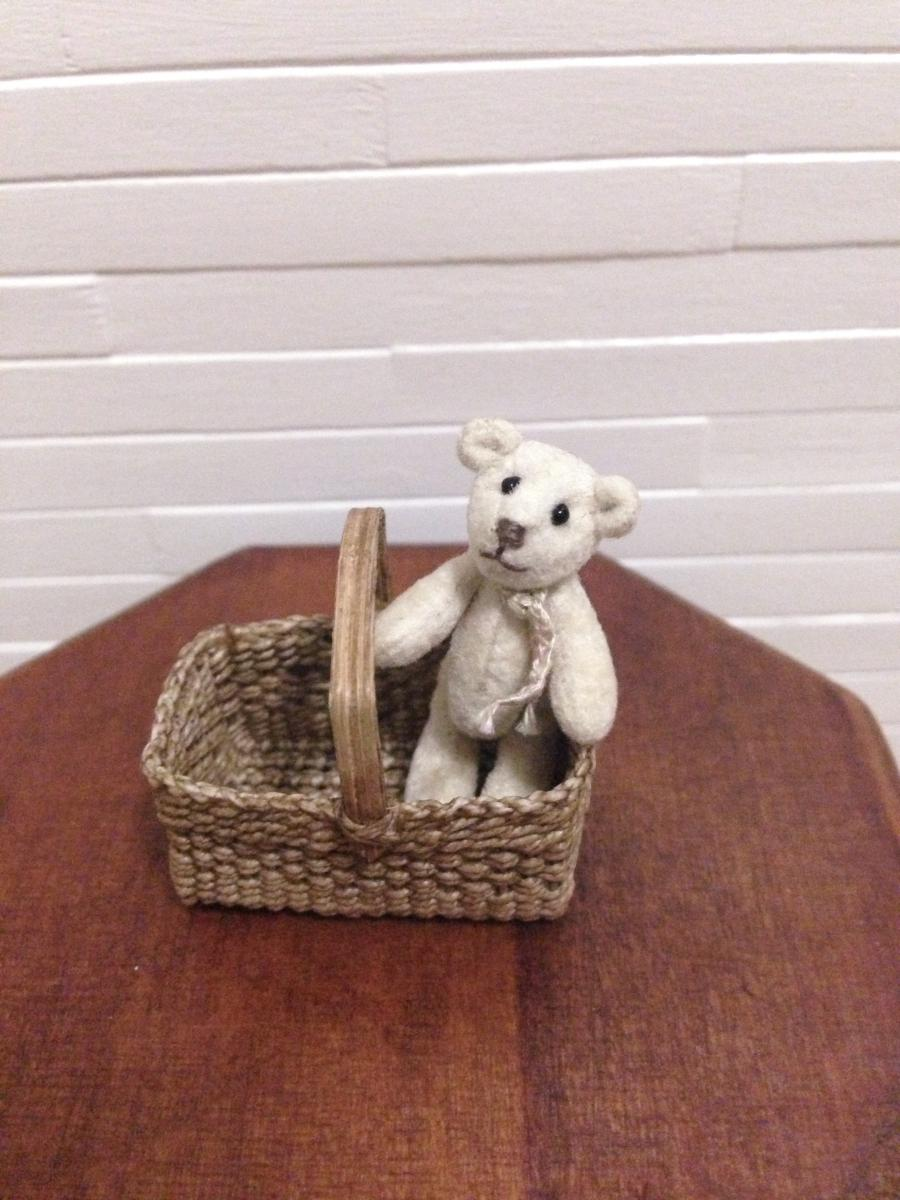 Micro Bear in a Basket.JPG