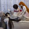 Custom doll couch- 3